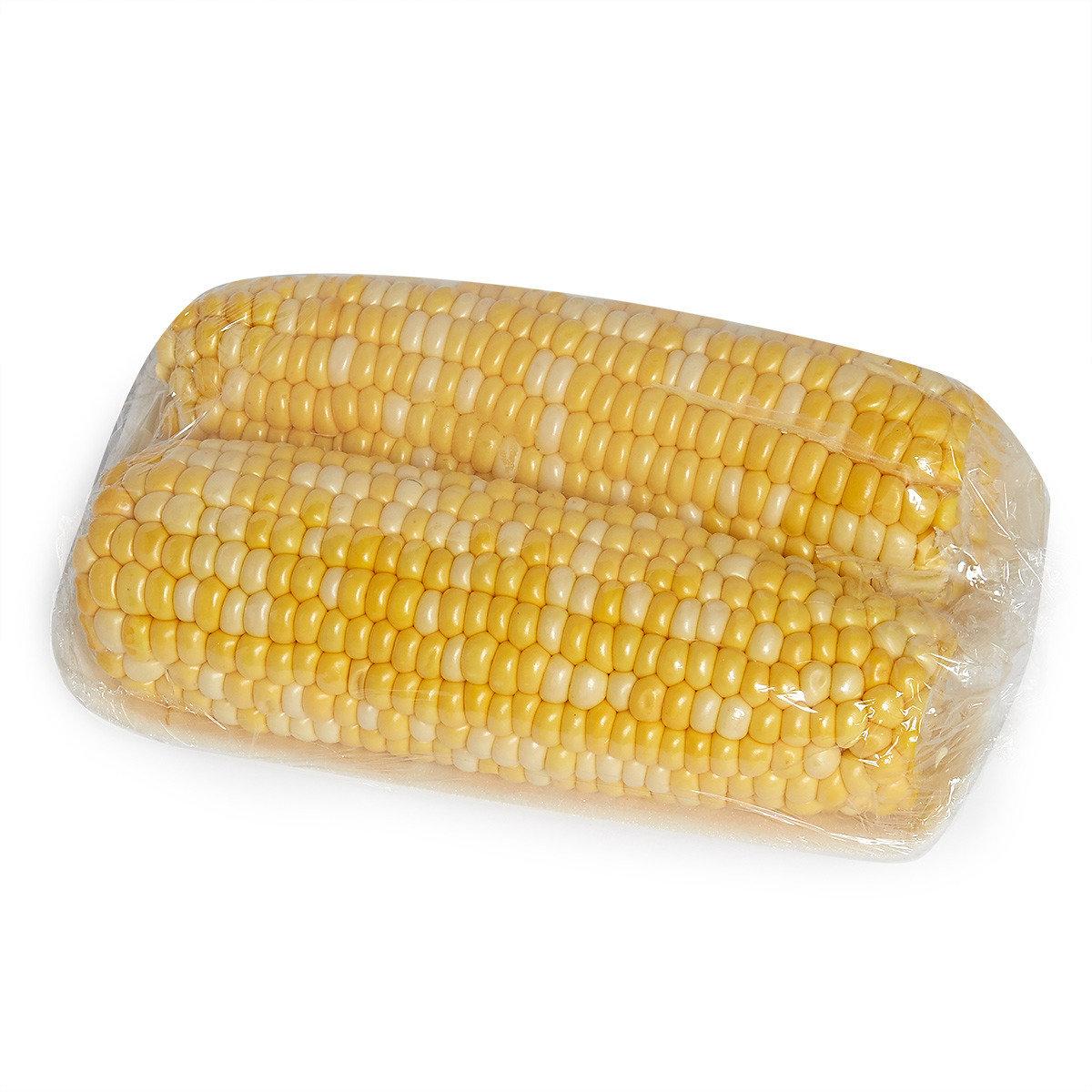 玉米 (2條/約400-500克)