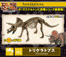 Re-ment Pose Skeleton 恐龍no.102 三角龍