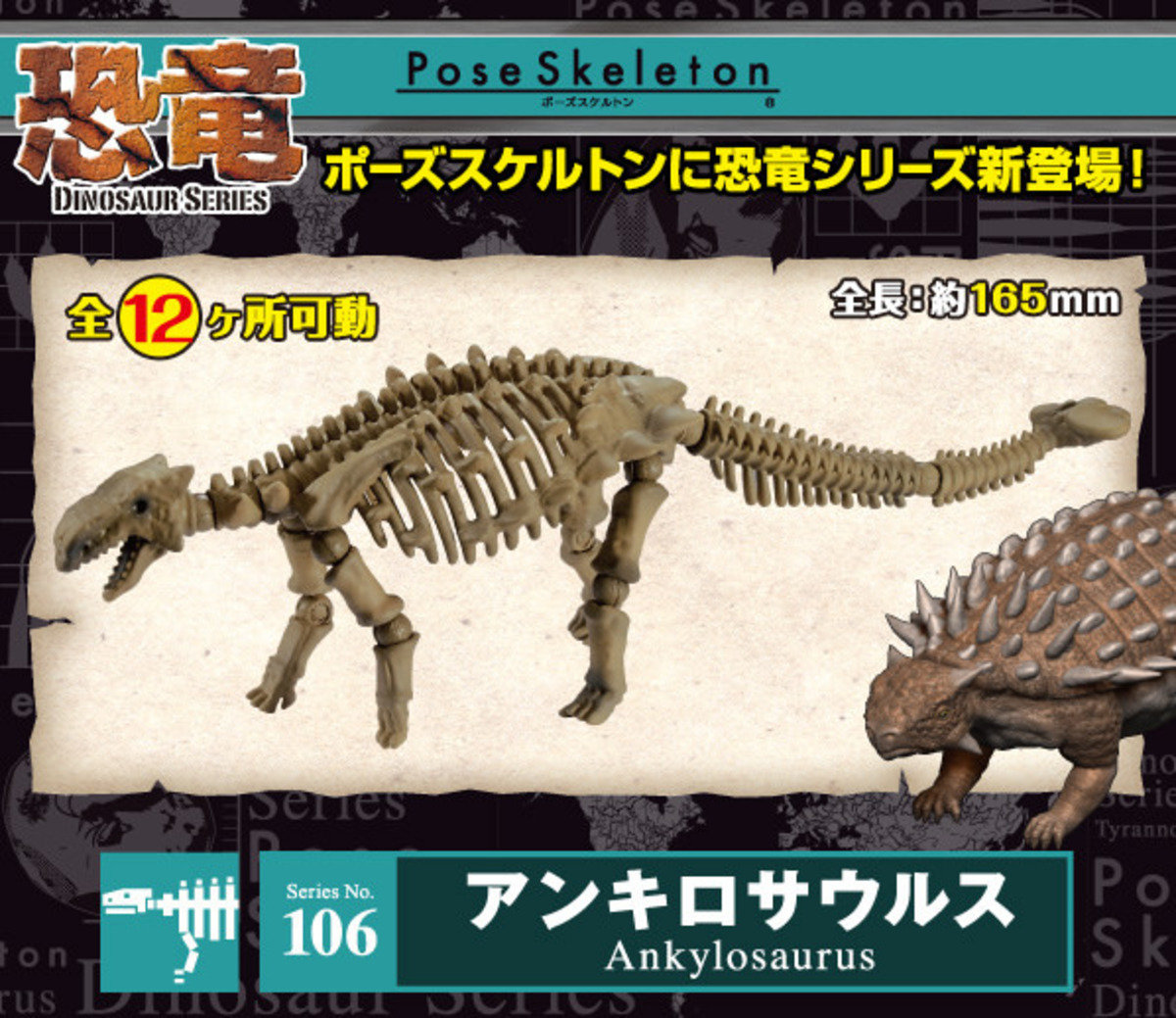 Re-ment Pose Skeleton 恐龍no.106 甲龍