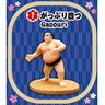 Re-ment Petit Sample Series: SumoWrestlers 日本相撲 (一套6款)