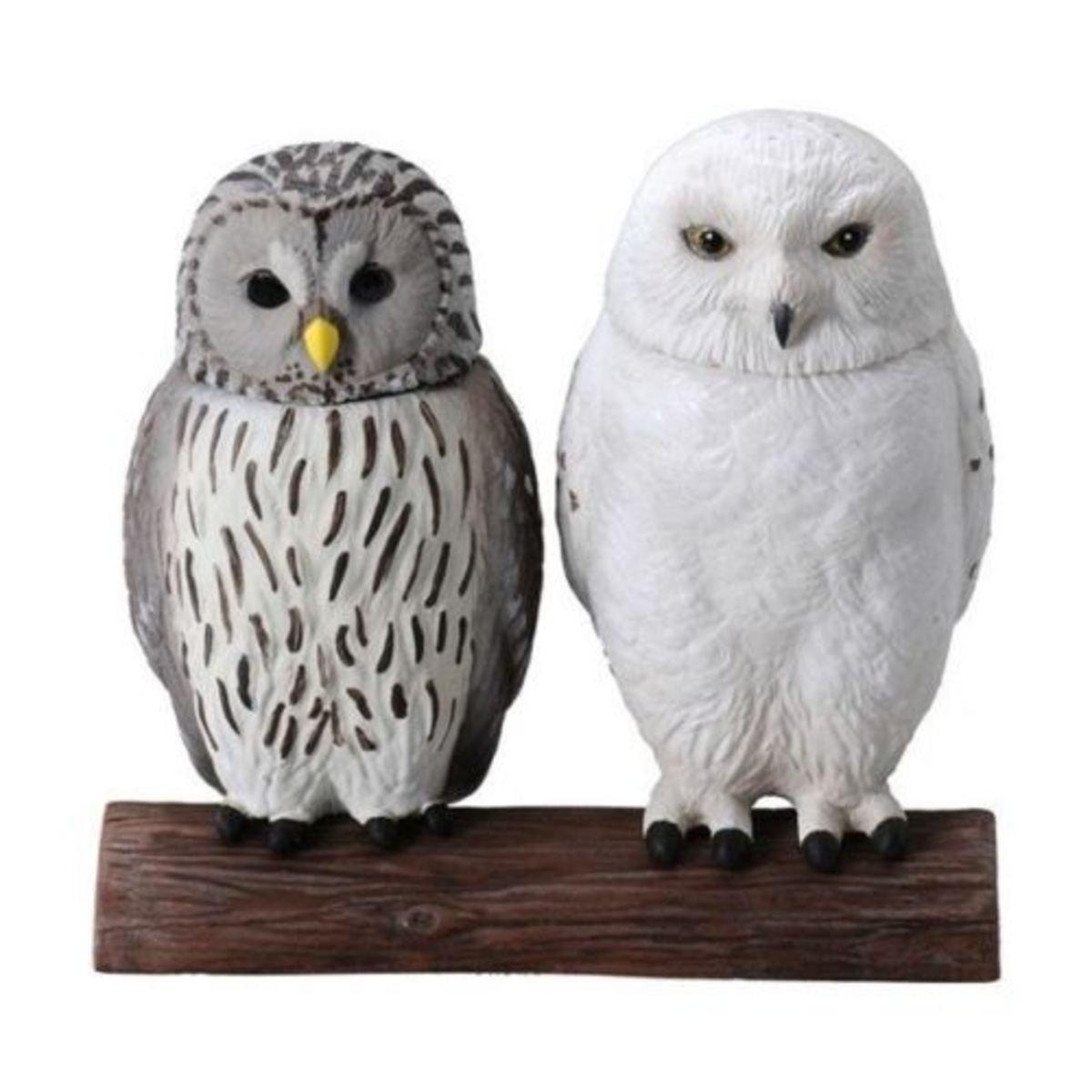 Ania Figure 探索動物系列 AL-12白貓頭鷹 &貓頭鷹 一套2款