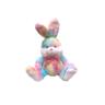 COLOR RICH -  彩虹兔兔  (35cm) - 10A0366RA