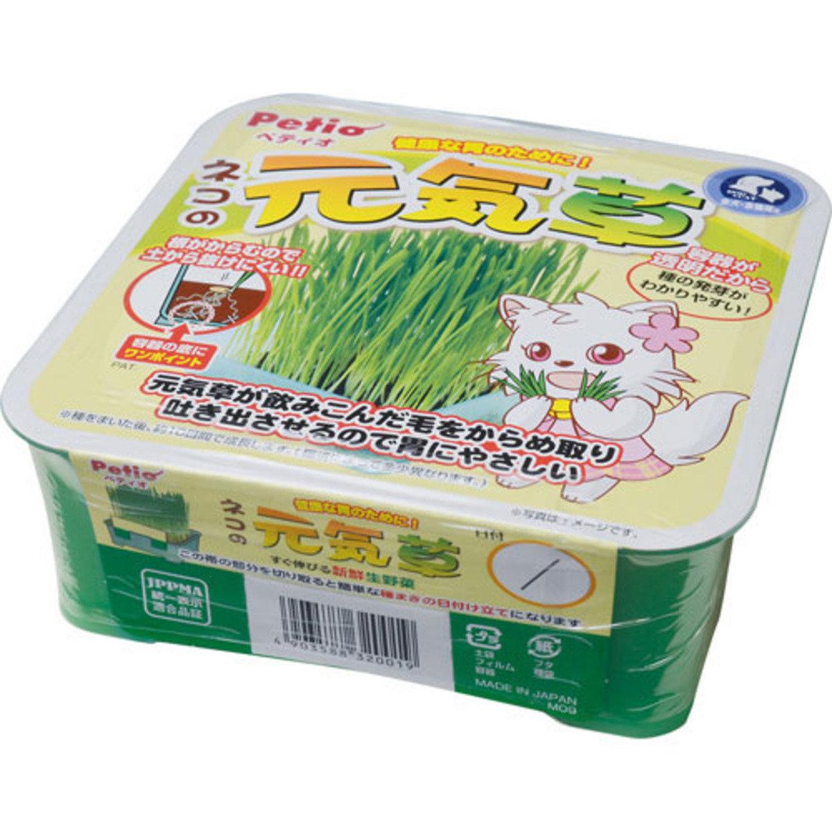自種貓草方便套裝(Y201000)