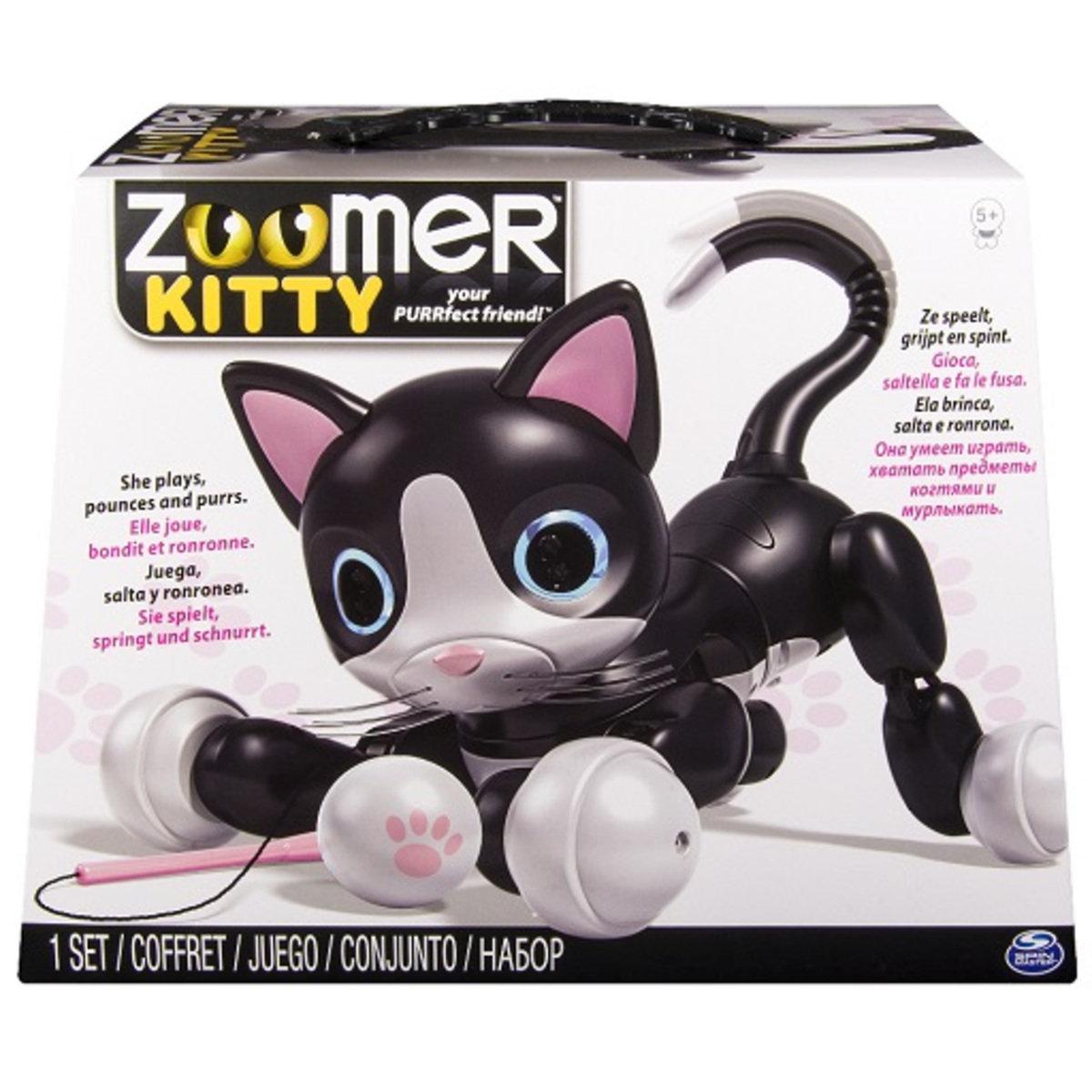 Zoomer 可愛貓咪