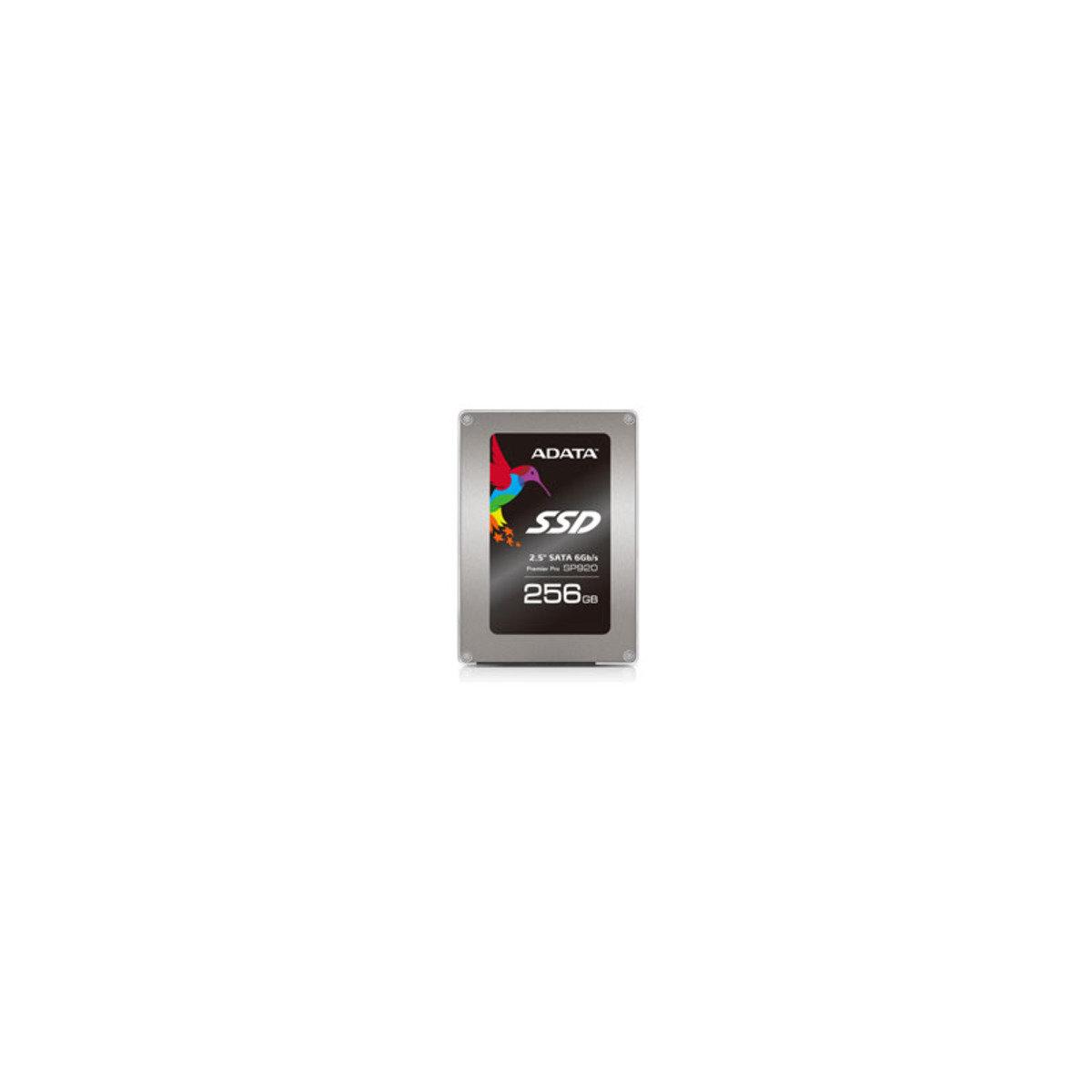 SSD 高速內置固態硬碟 SP920 256GB