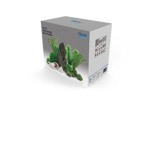 [贈品] 精美裝飾組合,綠色,適合30升或以上魚缸