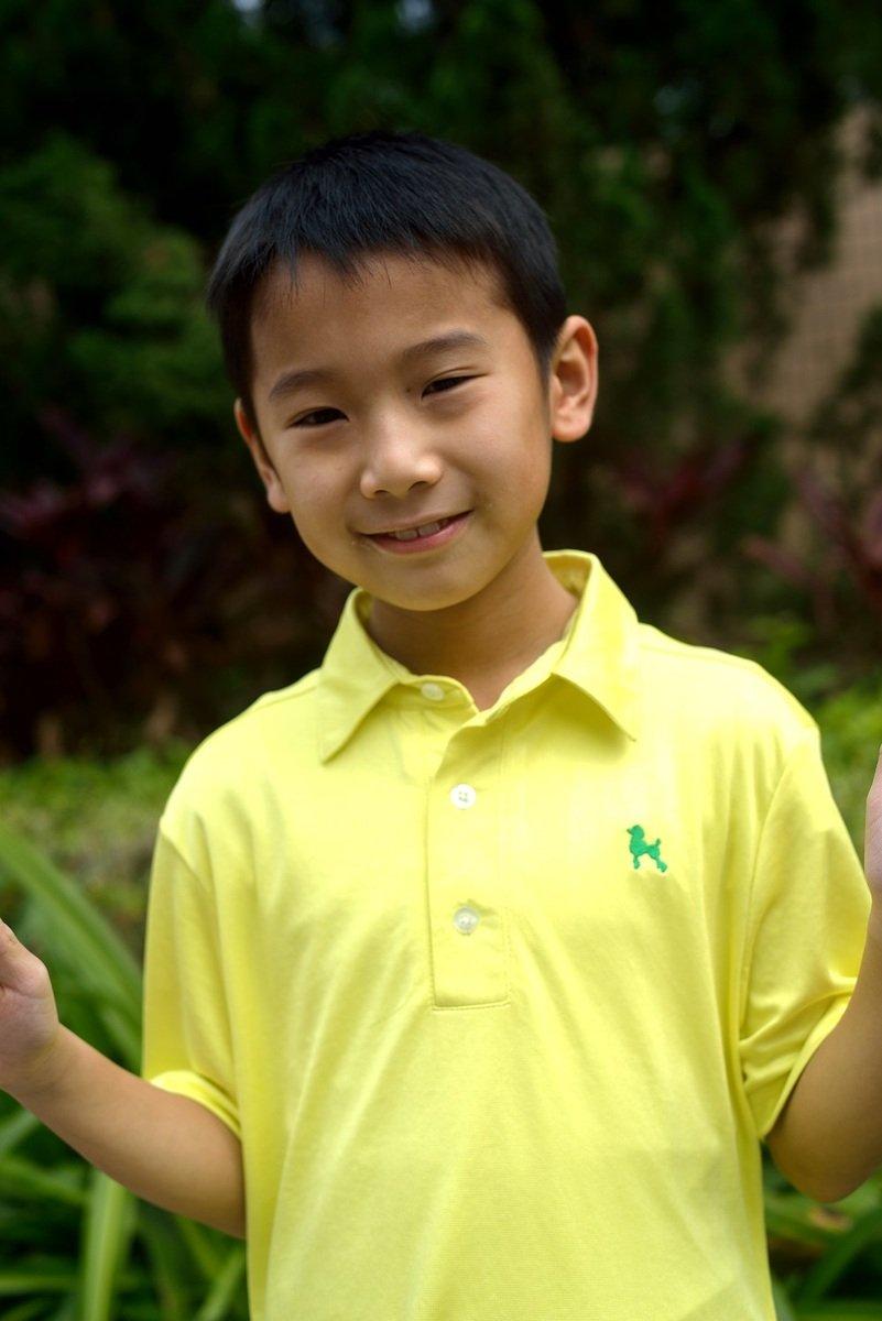 Polo 衫 - 黃色