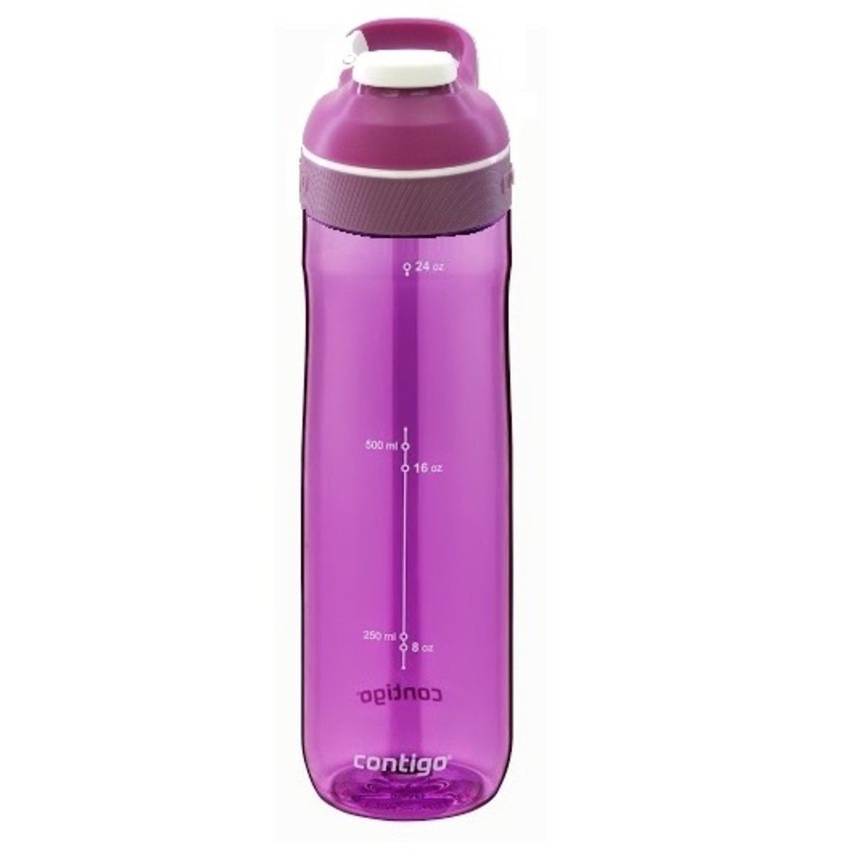 Cortland 運動偷閒杯 - 紫蘭花杯紫蘭花蓋