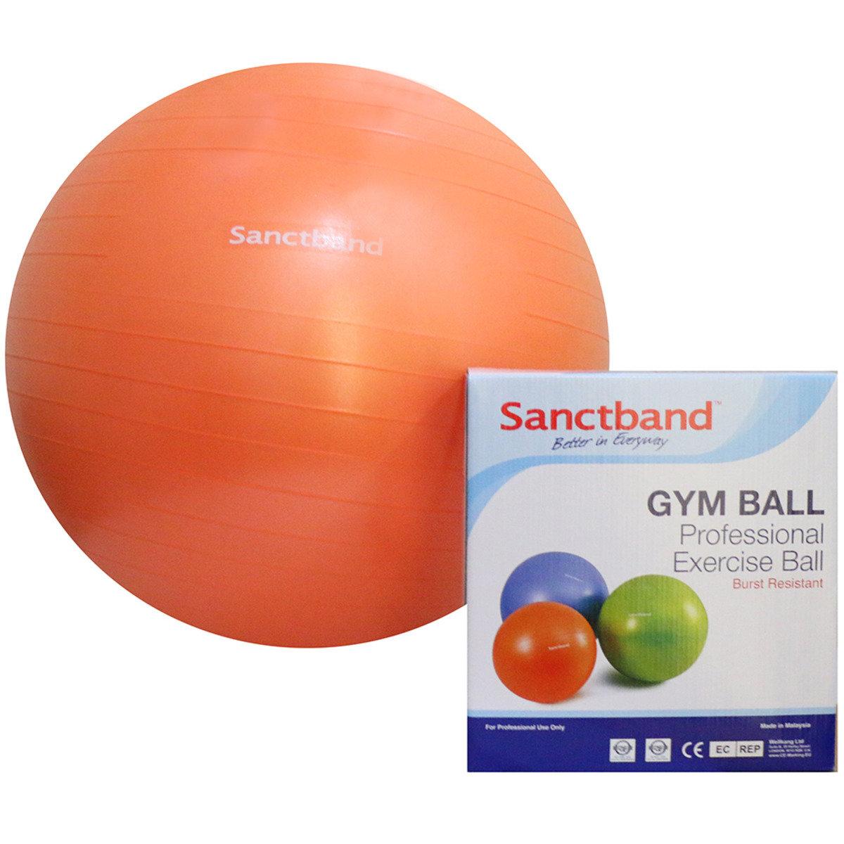 專業運動球 (備3個尺寸) - 55cm直徑/橙色