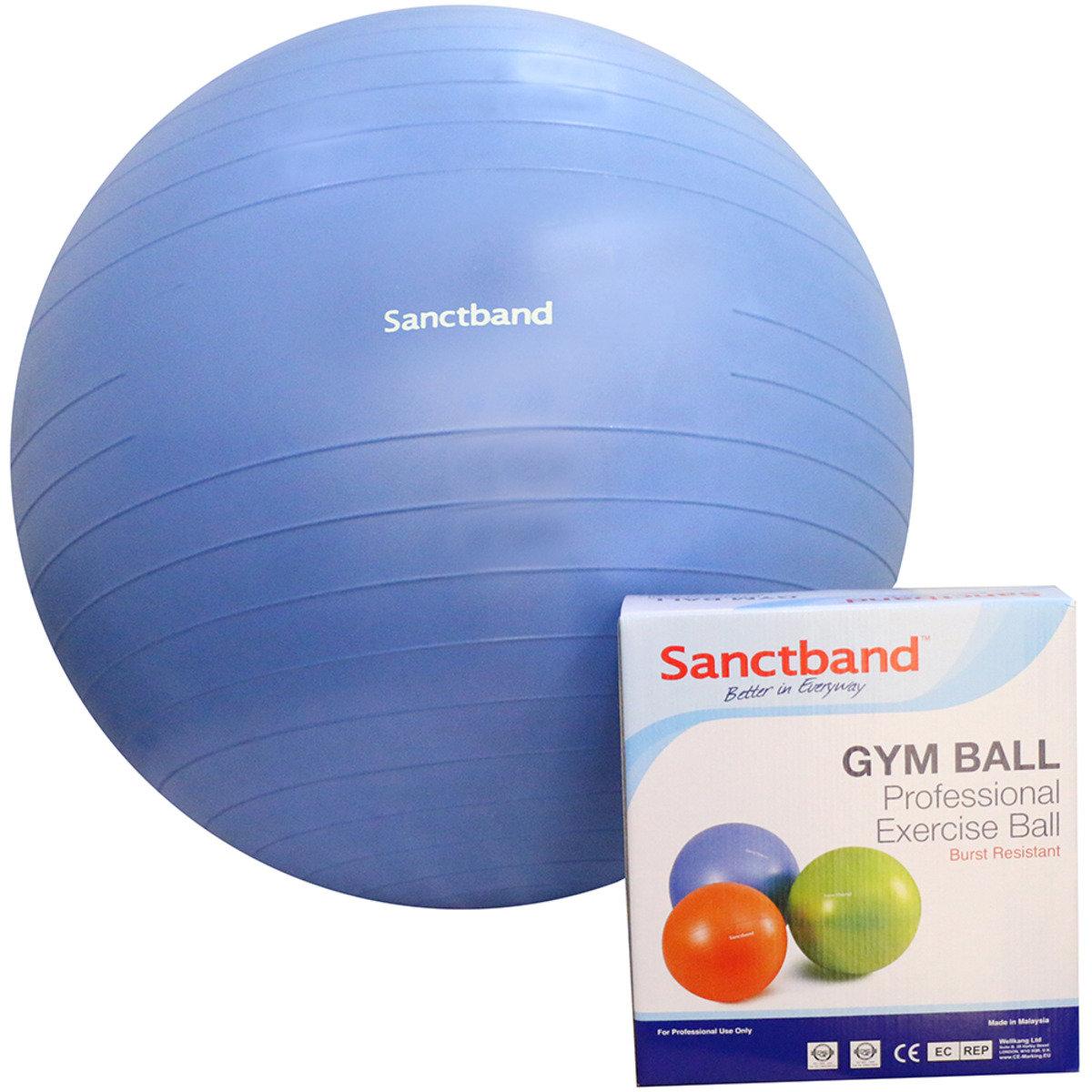 專業運動球 (備3個尺寸) - 75cm直徑/藍色