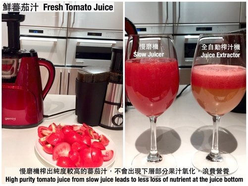 Gilman Gemini Slow Juicer Review : Gemini Click-starter GSJ150 Slow Juicer HKTvmall Online Shopping