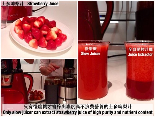 Gemini Slow Juicer Review : Gemini Click-starter GSJ150 Slow Juicer HKTvmall Online Shopping