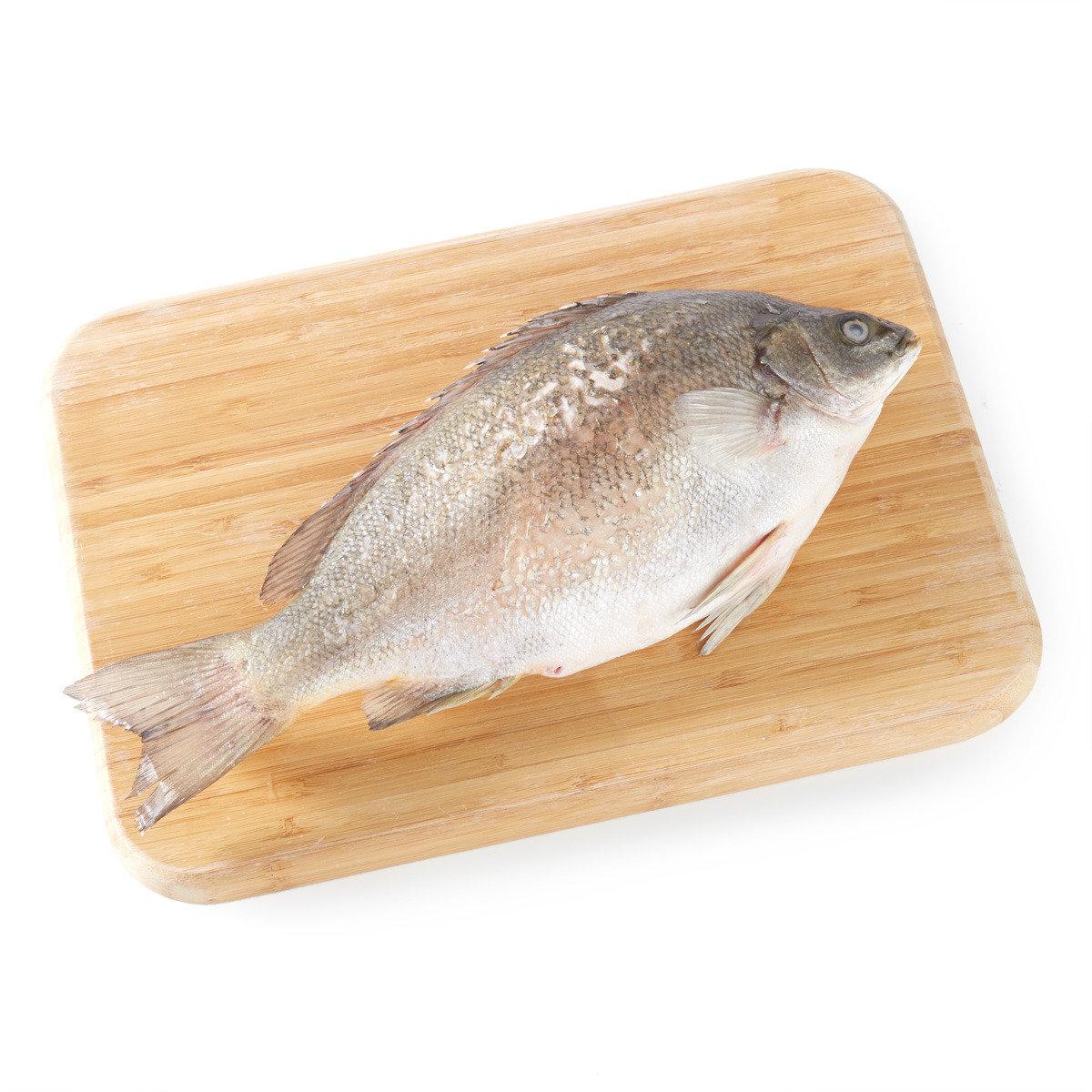寶石魚 (急凍)
