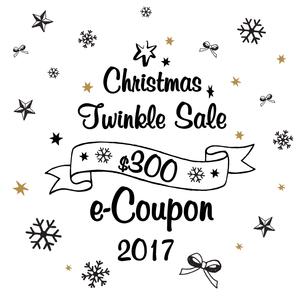 【聖誕專享】$300優惠券