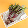 紅菜頭 (本地菜) (約350-450克)