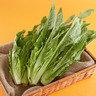 油麥菜 (本地菜) (約200-300克)