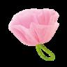 葵茶美-WASABI- 泡泡洗面乳 (柚子味)/100g 連花花起泡網
