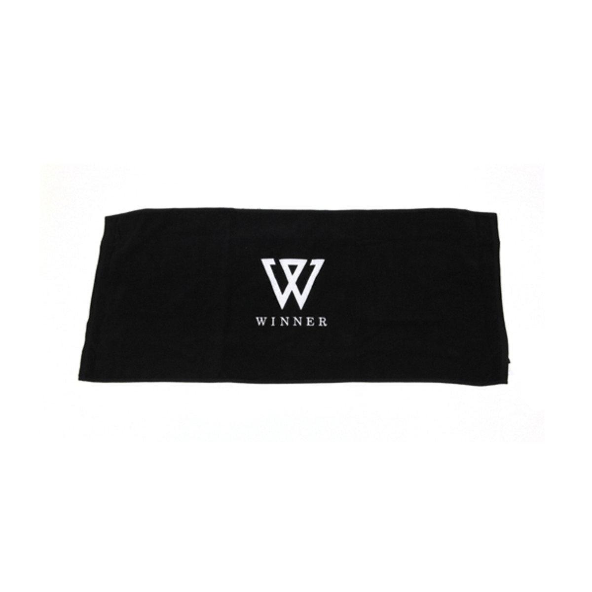 WINNER WWIC 2015 應援巾_GD00012496