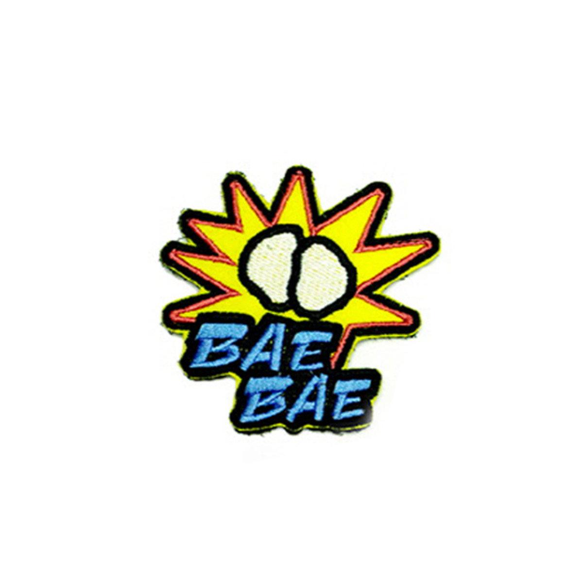 BIGBANG - 襟章 (BAEBAE) [BIGBANG WORLD TOUR 'MADE' FINAL IN SEOUL]