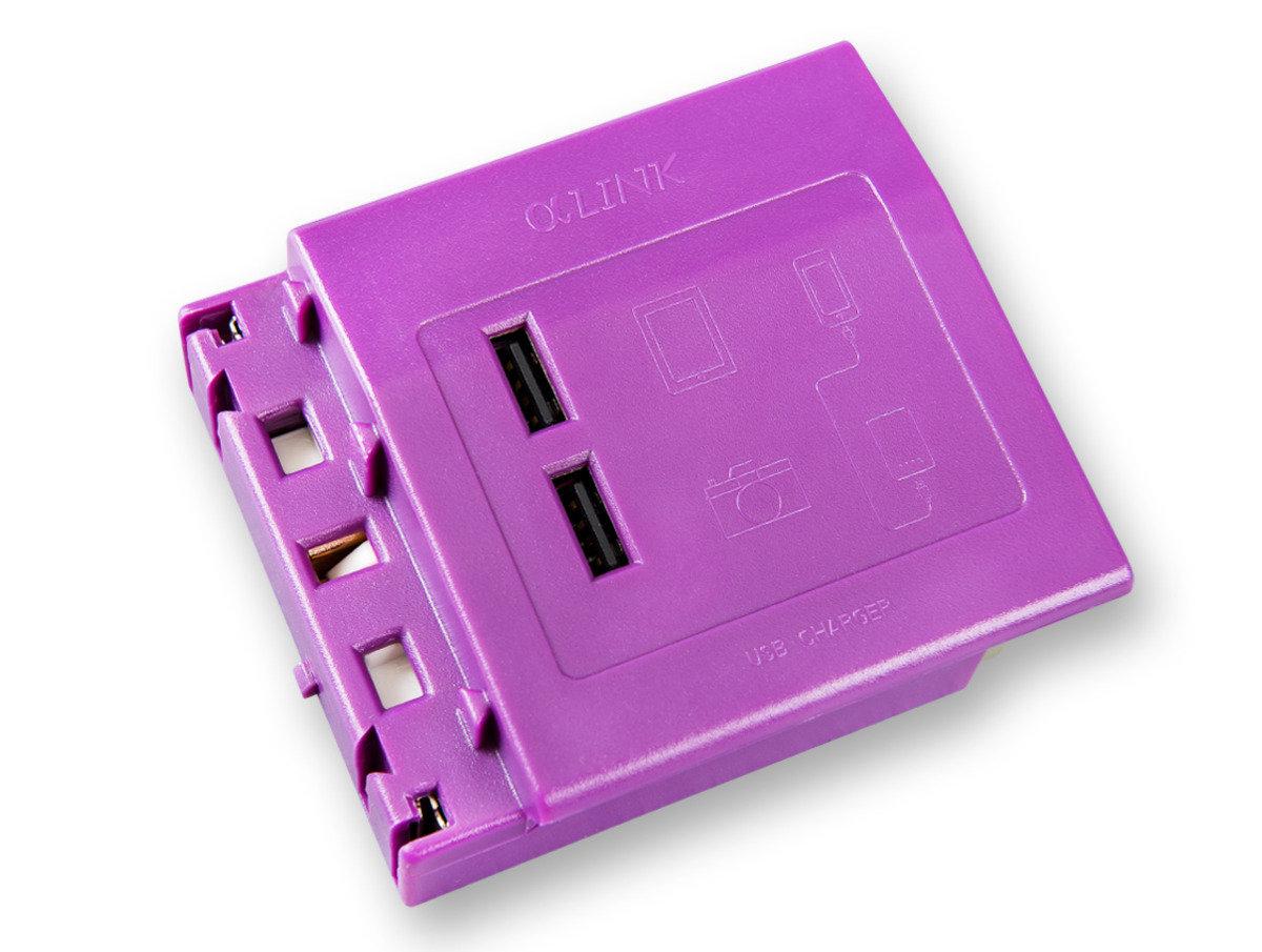 隨插式系列 - USB充電模組 (紫色)