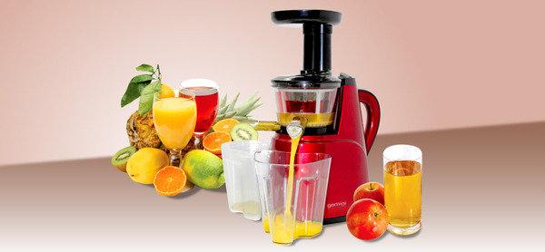 慢速榨取技術,有效保留蔬果中的味道、營養和維他命<br>Gemini 慢磨榨汁機