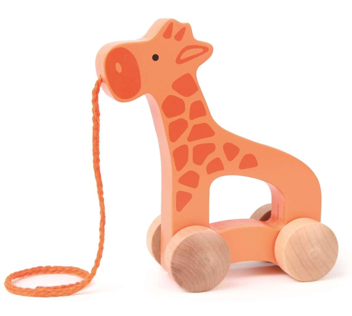 E0906-Giraffe