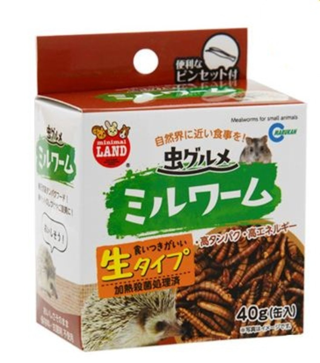 ML-163 Insect Speciality Mealworms 40g