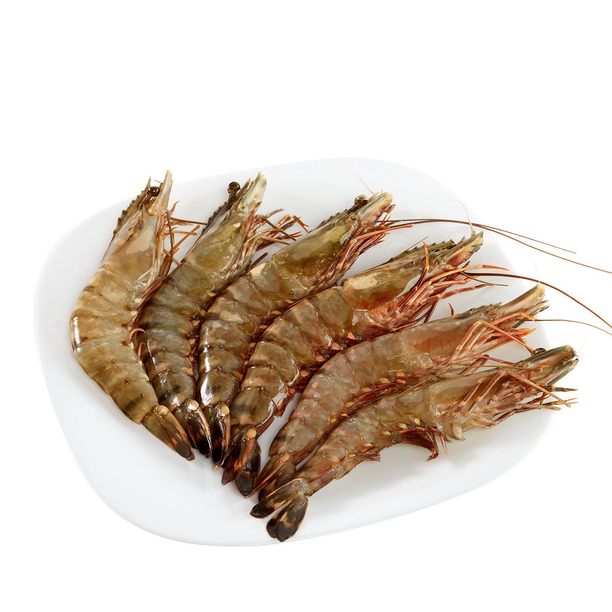 Vietnam Black Tiger shrimp HOSO(6pcs)