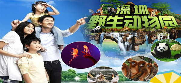 Safari Park Shenzhen Ticket (including Ocean World)